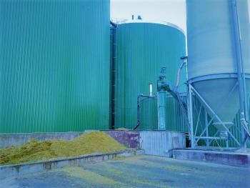 Biomass Clean Tech PPP_0.jpg